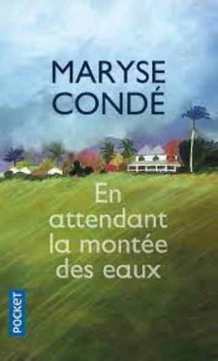 """Cycle de littérature haïtienne : Ochan pou Ayiti!  """"En attendant la montée des eaux"""" de Maryse Condé"""